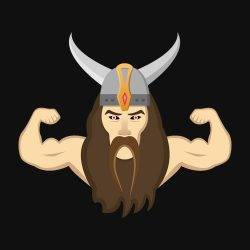 VikingFitness